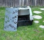 kutyaszálító doboz