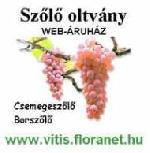 Csemegeszőlő és borszőlő oltvány webáruház